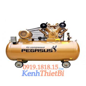 Máy Nén Khí Pegasus TM V-0.6/8